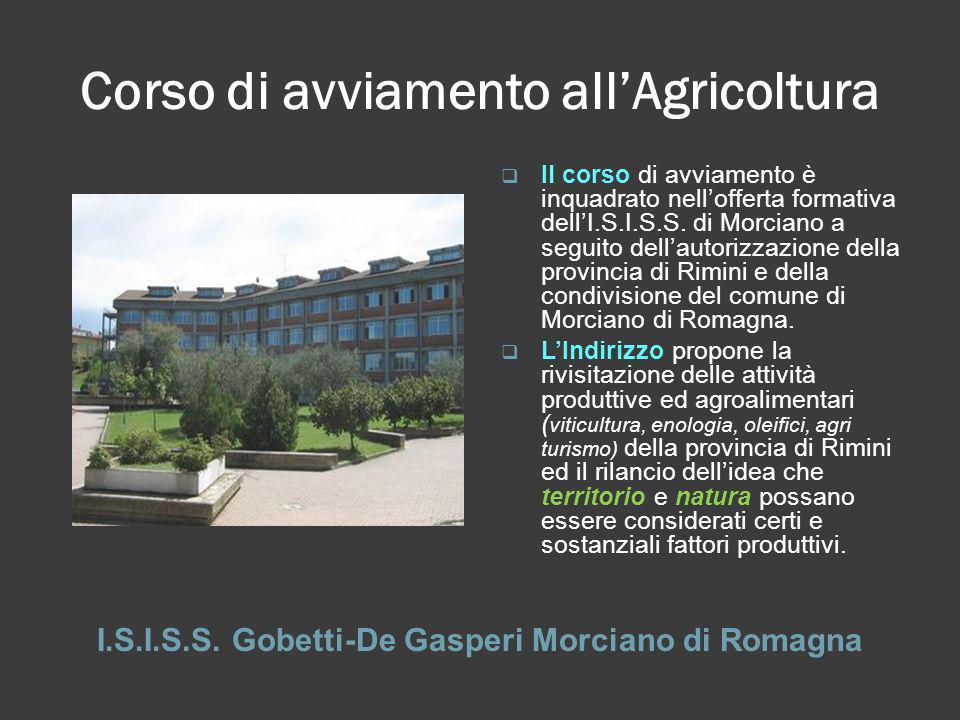Corso di avviamento allAgricoltura I.S.I.S.S. Gobetti-De Gasperi Morciano di Romagna Il corso di avviamento è inquadrato nellofferta formativa dellI.S