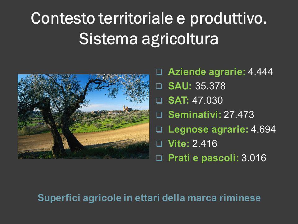Contesto territoriale e produttivo. Sistema agricoltura Superfici agricole in ettari della marca riminese Aziende agrarie: 4.444 SAU: 35.378 SAT: 47.0