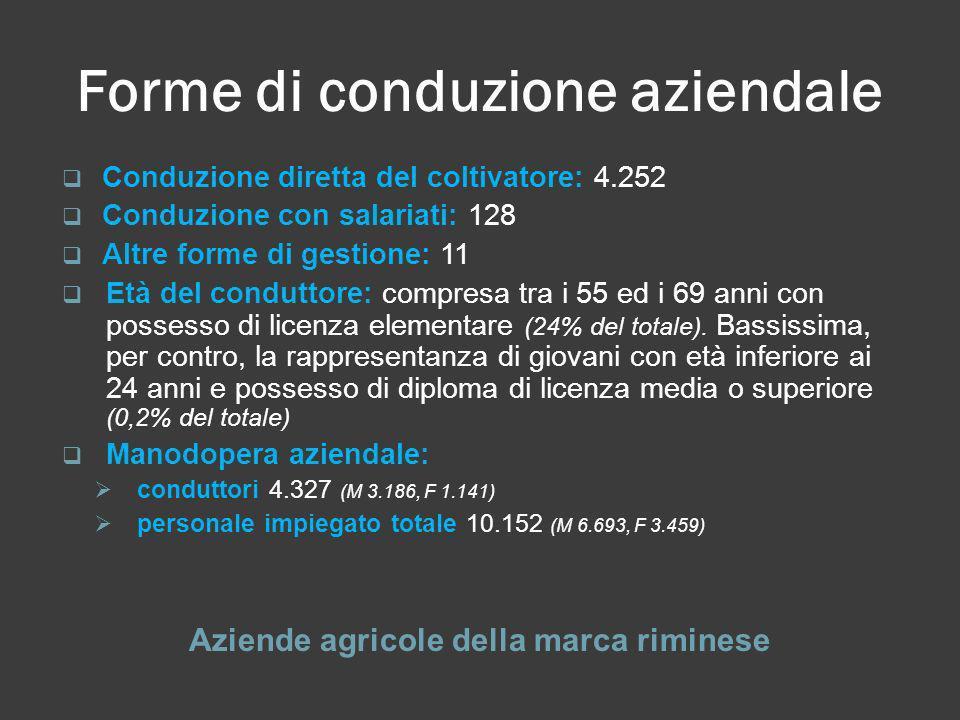 Forme di conduzione aziendale Aziende agricole della marca riminese Conduzione diretta del coltivatore: 4.252 Conduzione con salariati: 128 Altre form
