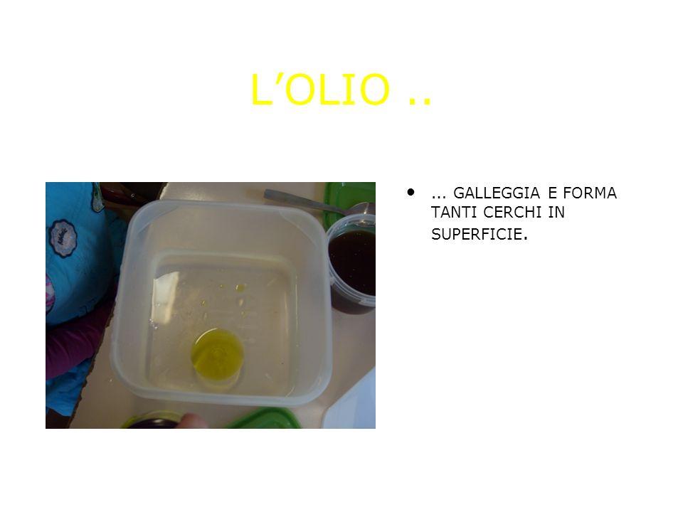 LOLIO.. … GALLEGGIA E FORMA TANTI CERCHI IN SUPERFICIE.