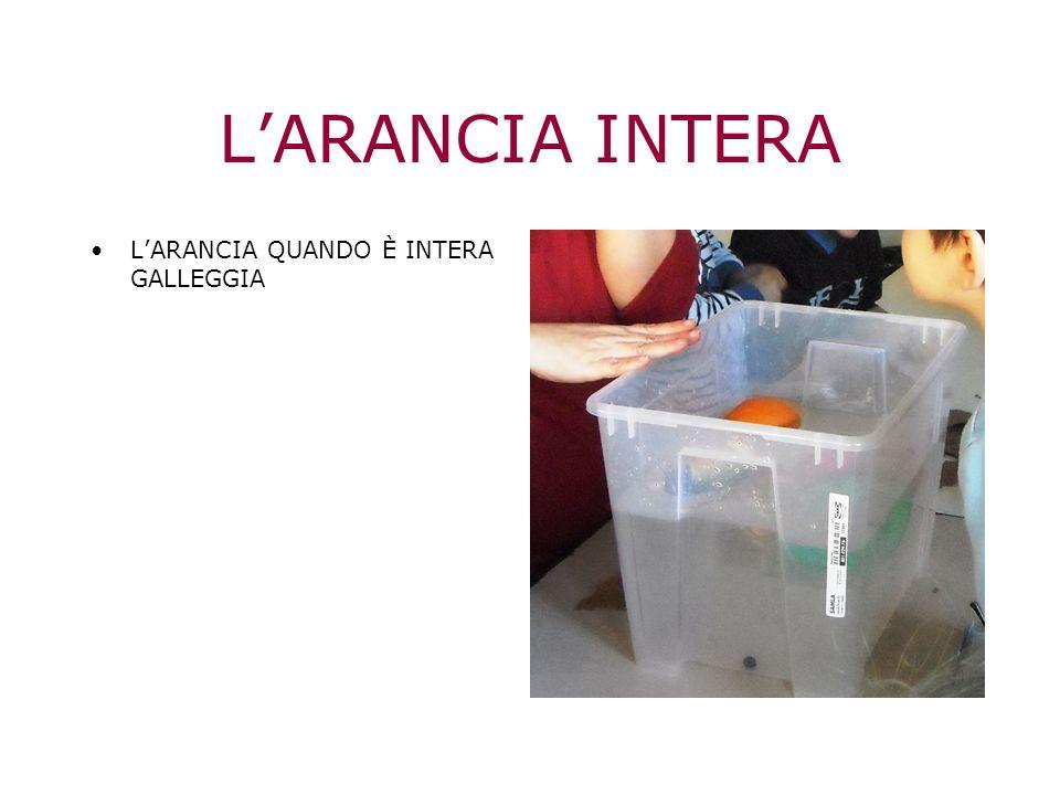 LARANCIA INTERA LARANCIA QUANDO È INTERA GALLEGGIA