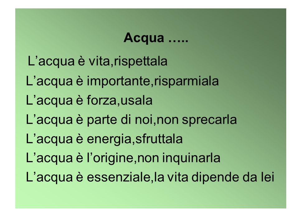Acqua ….. Lacqua è vita,rispettala Lacqua è importante,risparmiala Lacqua è forza,usala Lacqua è parte di noi,non sprecarla Lacqua è energia,sfruttala