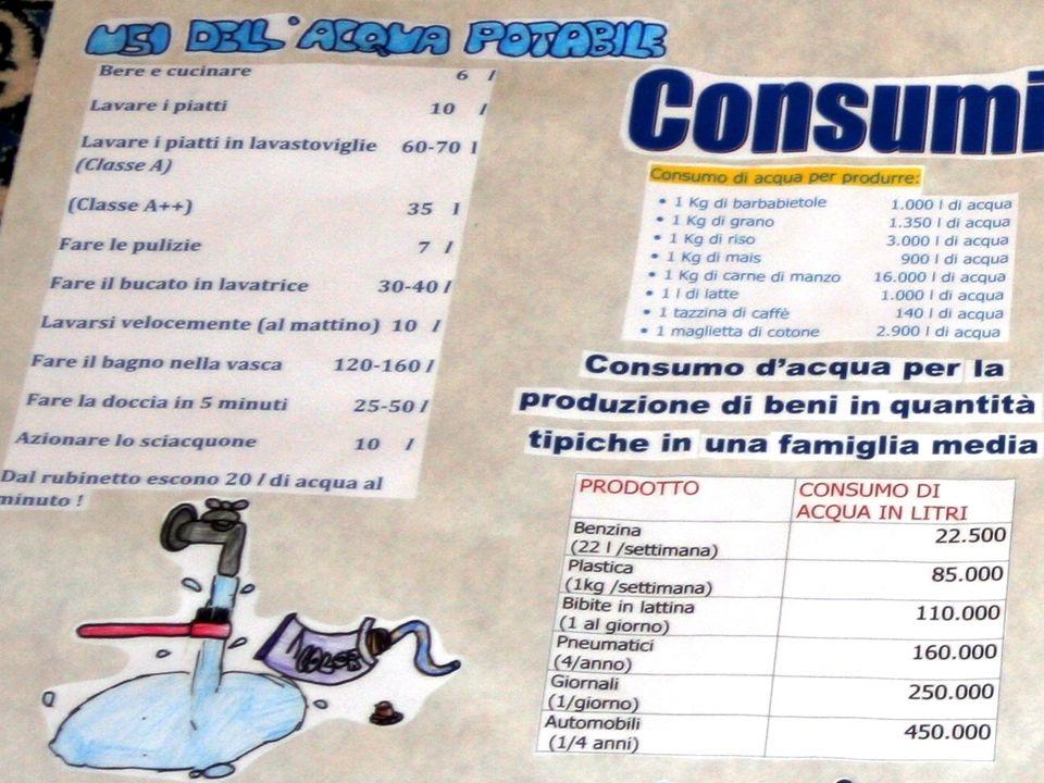 Benzina (22 litri/settimana)22.500 litri Plastica (1 Kg/settimana)85.000 litri Bibite in lattina (1/giorno)110.000 litri Pneumatici (4/anno)160.000 li