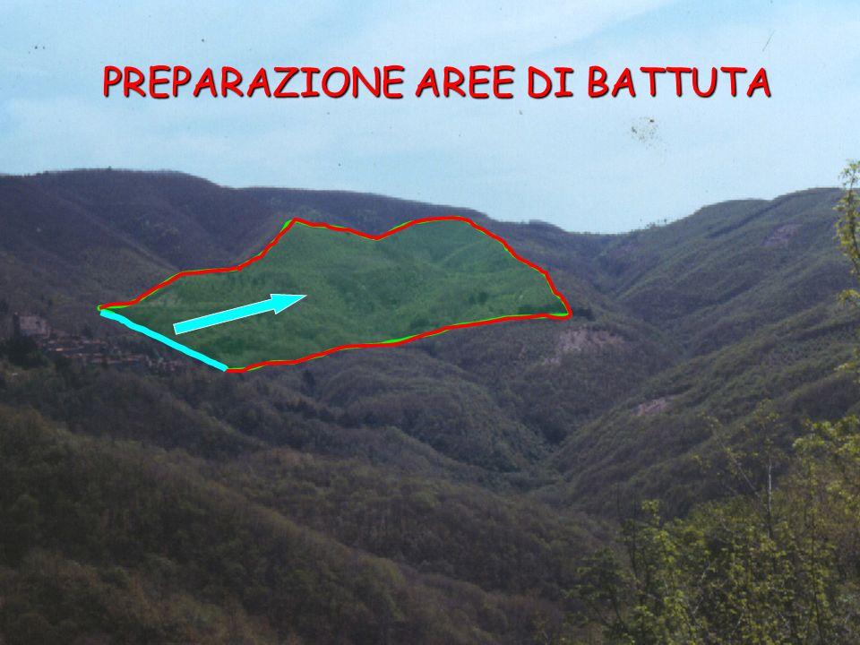 PREPARAZIONE AREE DI BATTUTA