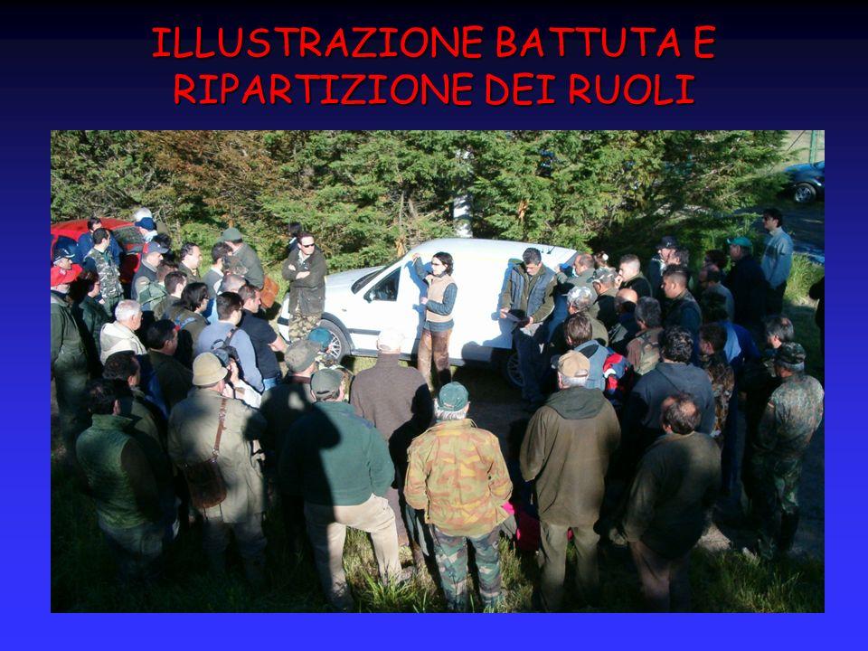 ILLUSTRAZIONE BATTUTA E RIPARTIZIONE DEI RUOLI