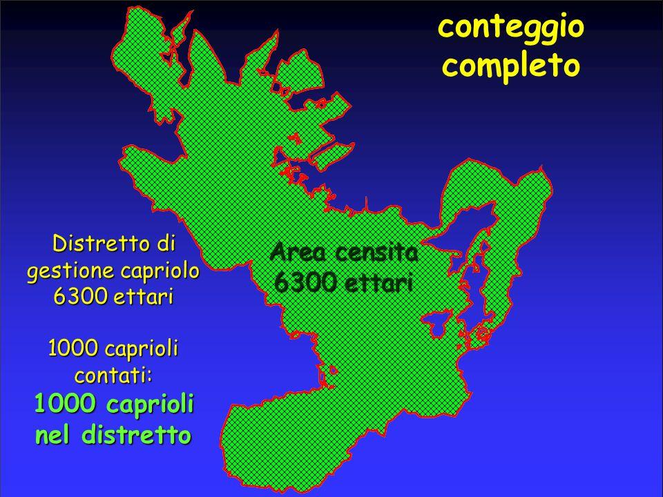 conteggio completo Distretto di gestione capriolo 6300 ettari Area censita 6300 ettari 1000 caprioli contati: 1000 caprioli nel distretto