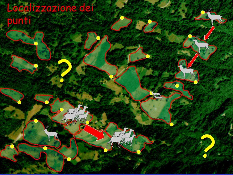 Localizzazione dei punti