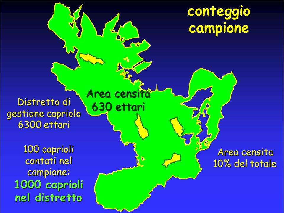 conteggio campione Distretto di gestione capriolo 6300 ettari Area censita 630 ettari Area censita 10% del totale 100 caprioli contati nel campione: 1000 caprioli nel distretto