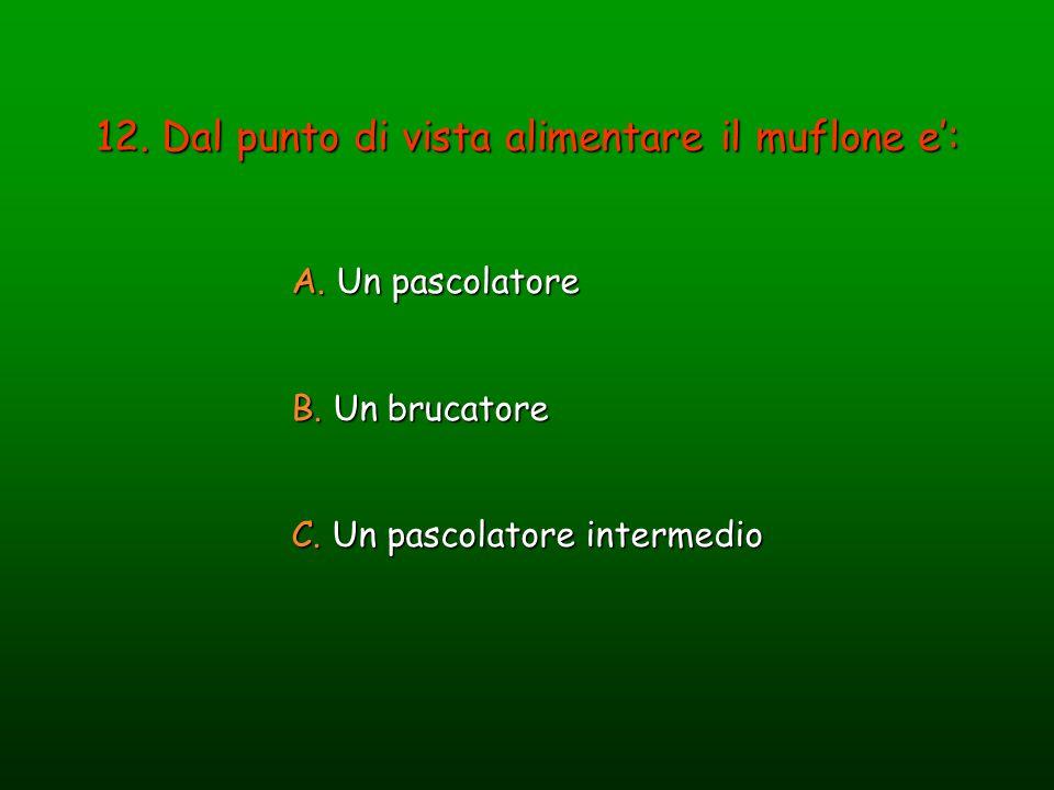 12. Dal punto di vista alimentare il muflone e: A. Un pascolatore B. Un brucatore C. Un pascolatore intermedio