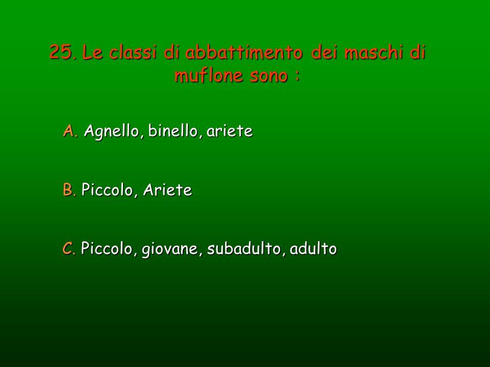 25. Le classi di abbattimento dei maschi di muflone sono : A. Agnello, binello, ariete B. Piccolo, Ariete C. Piccolo, giovane, subadulto, adulto