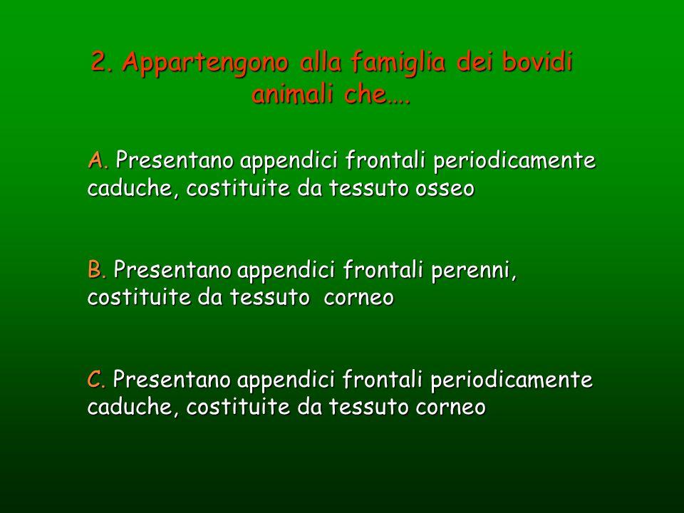2. Appartengono alla famiglia dei bovidi animali che…. A. Presentano appendici frontali periodicamente caduche, costituite da tessuto osseo B. Present