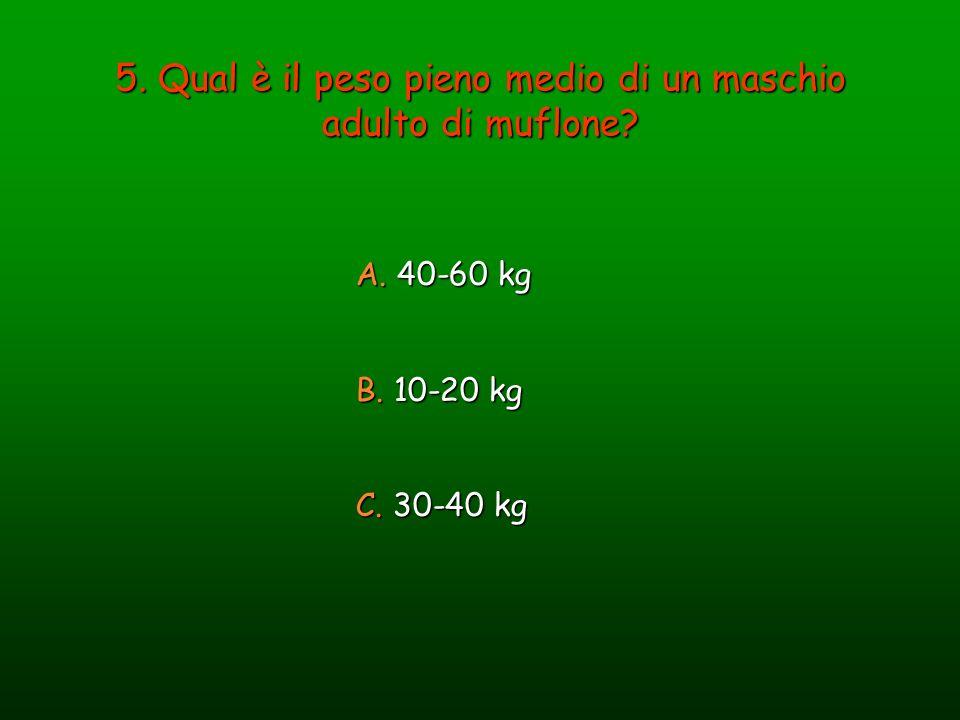5. Qual è il peso pieno medio di un maschio adulto di muflone? A. 40-60 kg B. 10-20 kg C. 30-40 kg