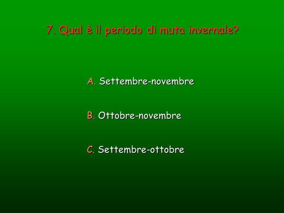 7. Qual è il periodo di muta invernale? A. Settembre-novembre B. Ottobre-novembre C. Settembre-ottobre