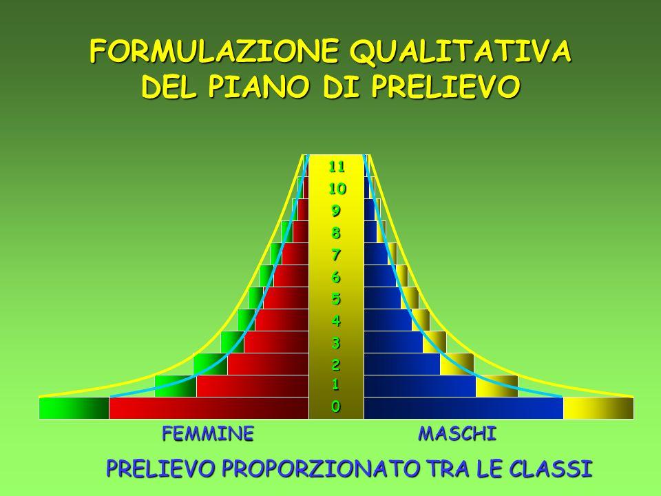 0 1 2 3 4 5 6 7 8 9 10 11 FEMMINEMASCHI PRELIEVO PROPORZIONATO TRA LE CLASSI FORMULAZIONE QUALITATIVA DEL PIANO DI PRELIEVO