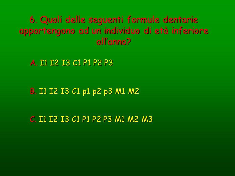 6. Quali delle seguenti formule dentarie appartengono ad un individuo di età inferiore allanno? A. I1 I2 I3 C1 P1 P2 P3 B. I1 I2 I3 C1 p1 p2 p3 M1 M2