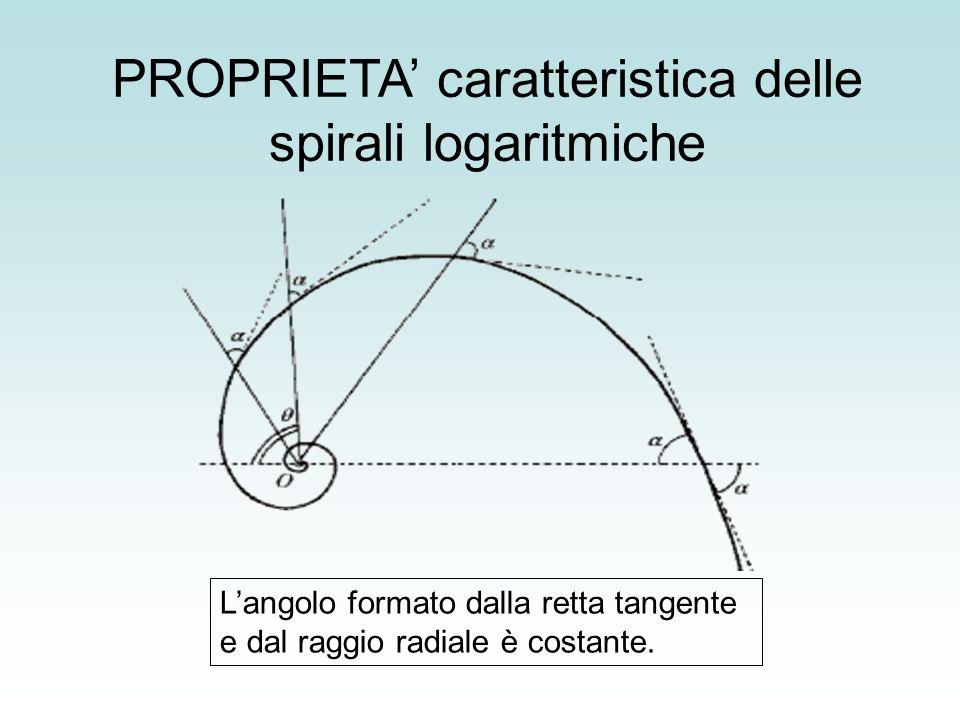 PROPRIETA caratteristica delle spirali logaritmiche Langolo formato dalla retta tangente e dal raggio radiale è costante.