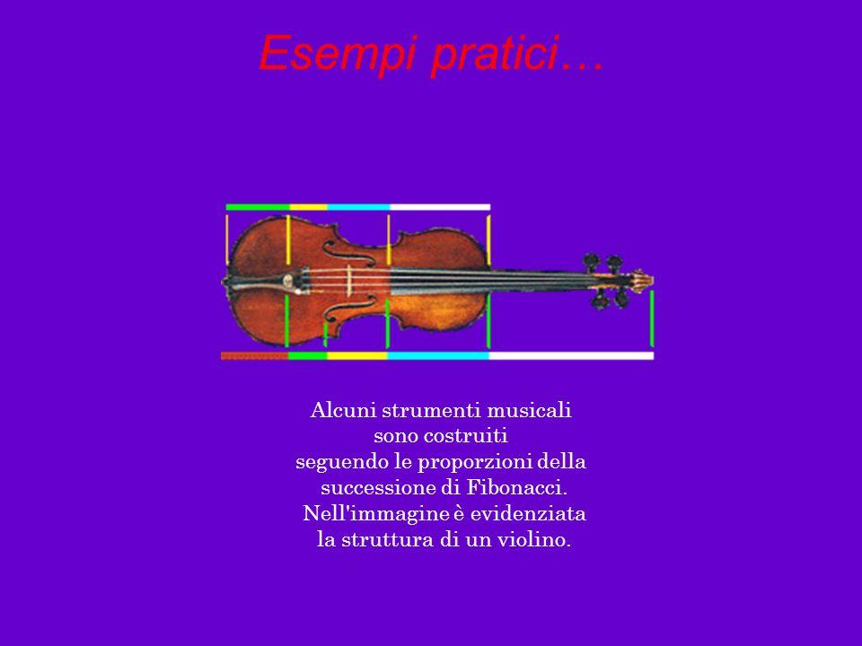 Esempi pratici… Alcuni strumenti musicali sono costruiti seguendo le proporzioni della successione di Fibonacci. Nell'immagine è evidenziata la strutt