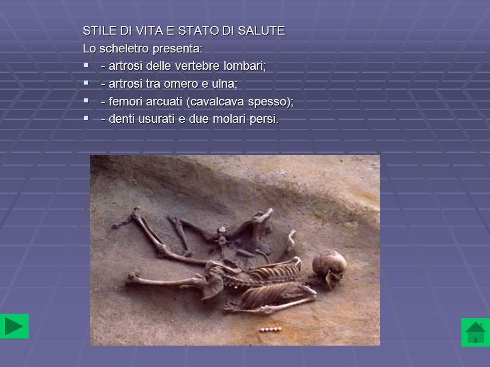 CAVALLO Del cavallo restano: - il bacino; - il bacino; - alcune costole e vertebre; - alcune costole e vertebre; - due incisivi.