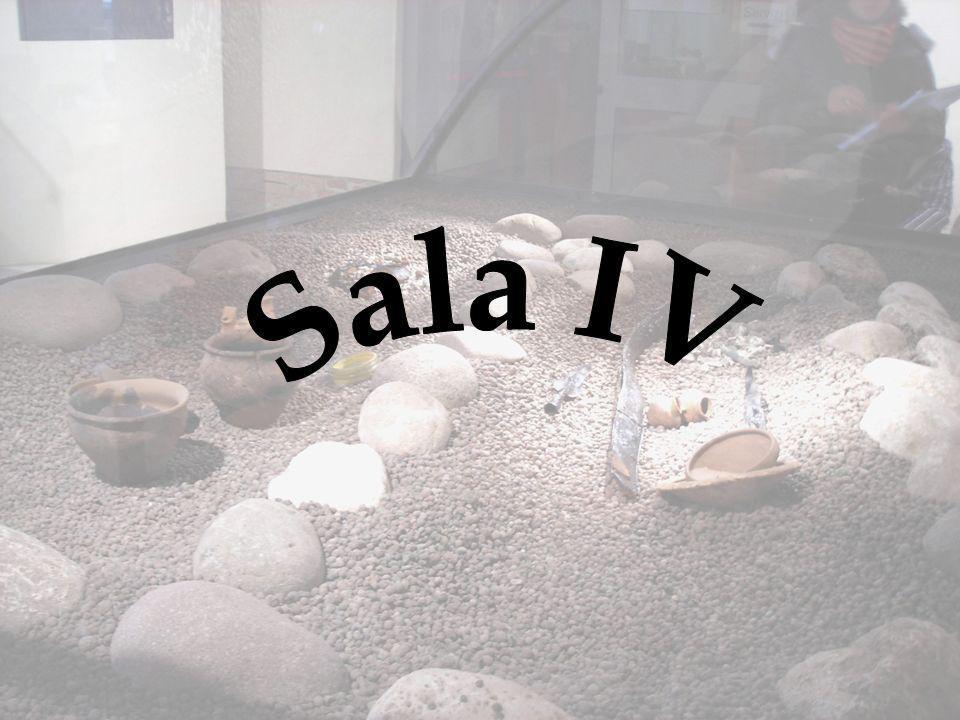 Pianta del Museo