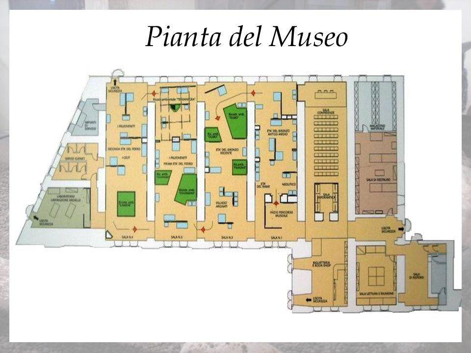 Tomba n°56 da Casalandri Urne cinerarie Tomba n° 92 a-b bracciale + reperti vari Reperti 67-68 necropoli di Lazisetta Tombe 109-110-121 e tomba a cassetta n°63 del II-I sec a.C.