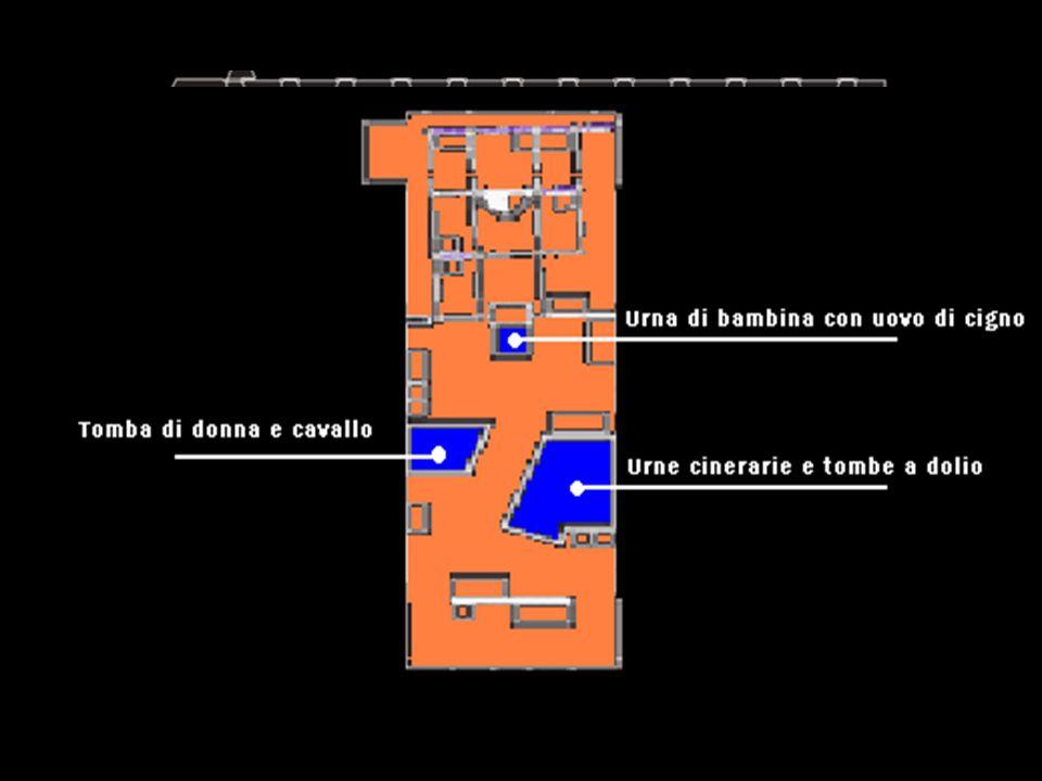 Centro Ambientale Archeologico di Legnago III Sala