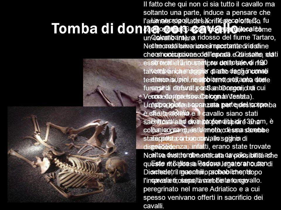 Tomba di donna con cavallo La necropoli, del X - IX secolo a.C., fu ritrovata a Gazzo Veronese (località Colombara), a ridosso del fiume Tartaro, che