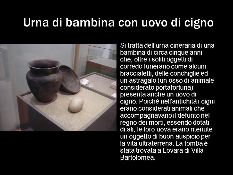 Urna di bambina con uovo di cigno Si tratta dell'urna cineraria di una bambina di circa cinque anni che, oltre i soliti oggetti di corredo funerario c