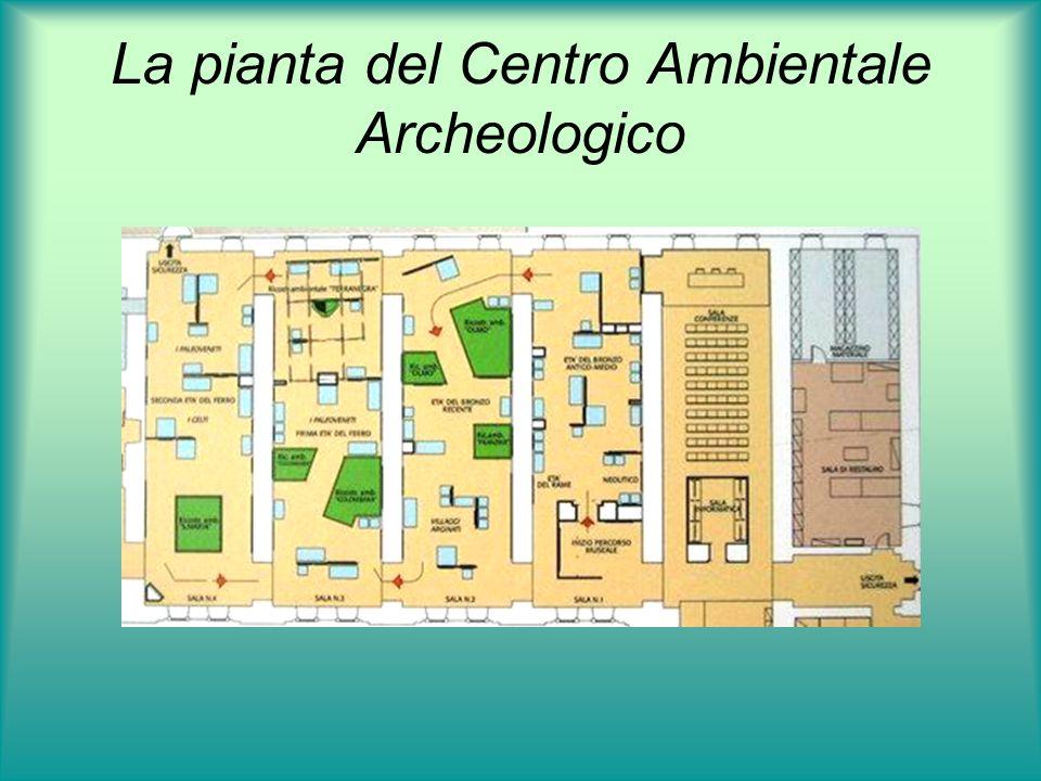 La pianta del Centro Ambientale Archeologico Sala 1