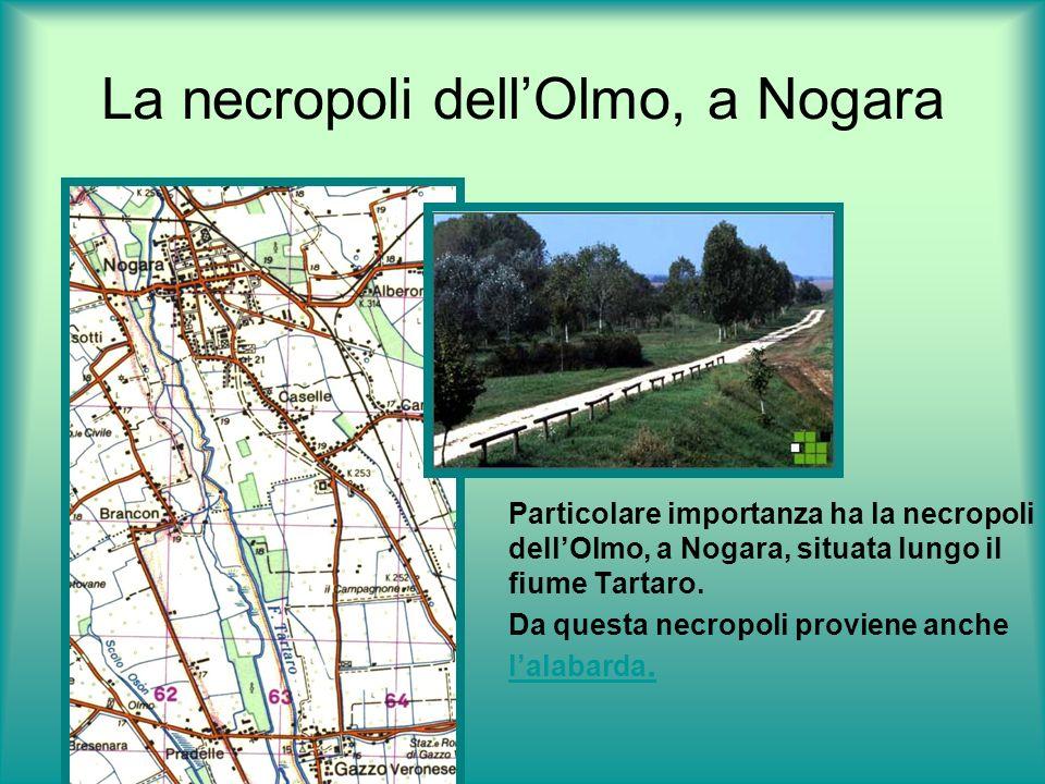 La necropoli dellOlmo, a Nogara Particolare importanza ha la necropoli dellOlmo, a Nogara, situata lungo il fiume Tartaro. Da questa necropoli provien