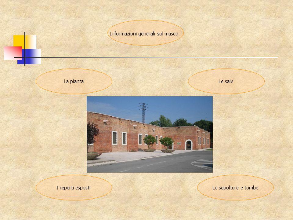 Informazioni generali sul museo I reperti esposti Le saleLa pianta Le sepolture e tombe