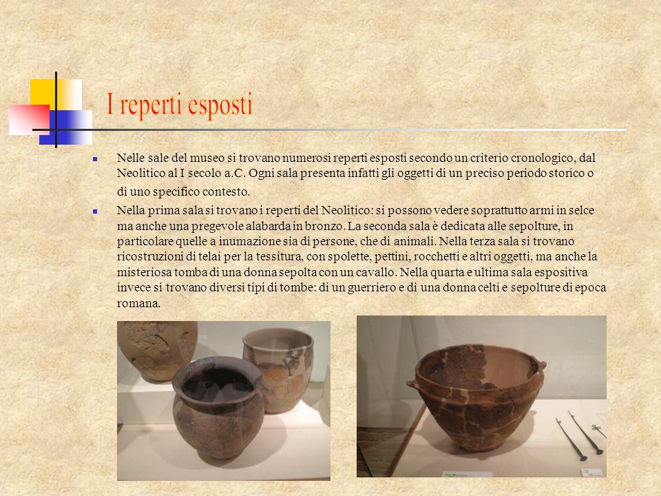 Nelle sale del museo si trovano numerosi reperti esposti secondo un criterio cronologico, dal Neolitico al I secolo a.C. Ogni sala presenta infatti gl