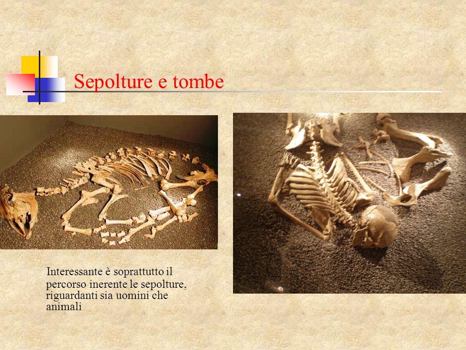 Sepolture e tombe Interessante è soprattutto il percorso inerente le sepolture, riguardanti sia uomini che animali