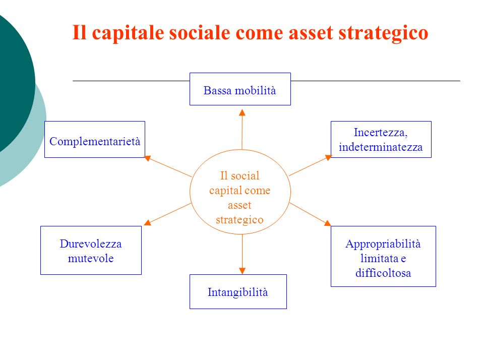 Un legame tra sociologia e management: il social capital come capitale E un investimento alternativo o complementare ad altre forme di capitale Come q