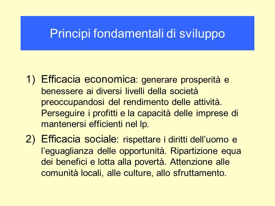 1)Efficacia economica : generare prosperità e benessere ai diversi livelli della società preoccupandosi del rendimento delle attività. Perseguire i pr