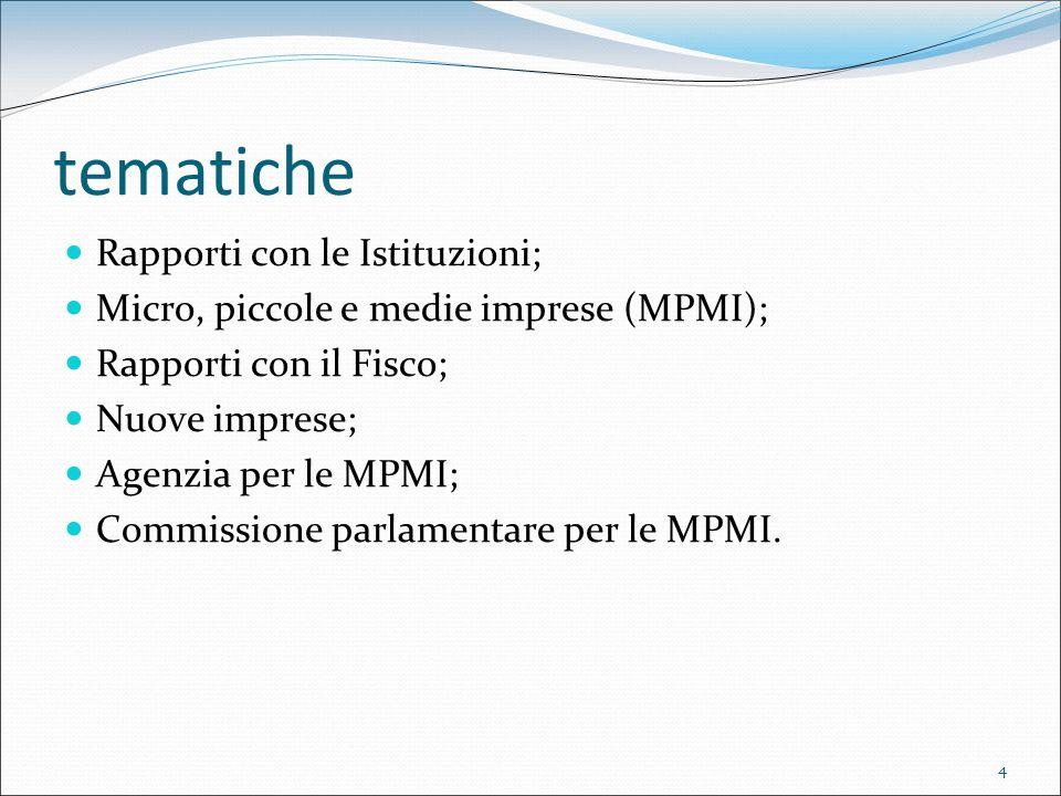 4 tematiche Rapporti con le Istituzioni; Micro, piccole e medie imprese (MPMI); Rapporti con il Fisco; Nuove imprese; Agenzia per le MPMI; Commissione parlamentare per le MPMI.