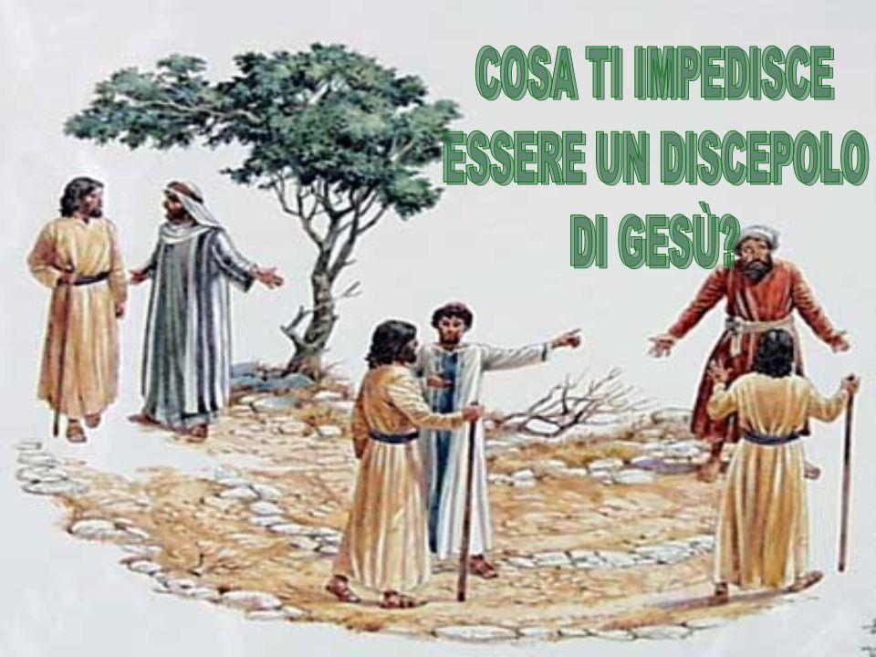 E Gesù gli disse: «Le volpi hanno delle tane, e gli uccelli del cielo dei nidi, ma il Figlio dell uomo non ha neppure dove posare il capo».