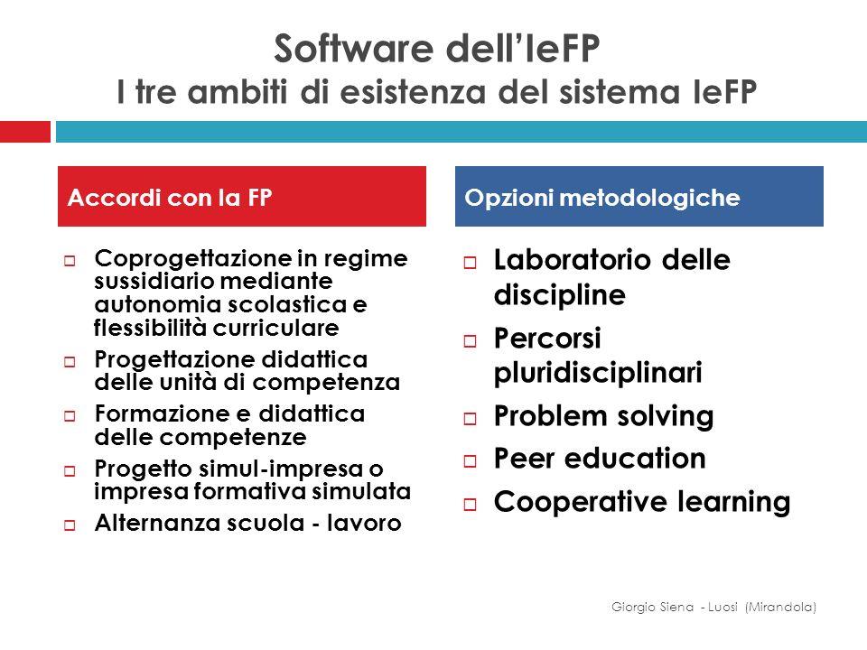 Software dellIeFP I tre ambiti di esistenza del sistema IeFP Coprogettazione in regime sussidiario mediante autonomia scolastica e flessibilità curric