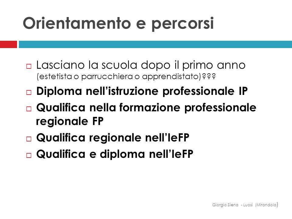 Orientamento e percorsi Giorgio Siena - Luosi (Mirandola ) Lasciano la scuola dopo il primo anno (estetista o parrucchiera o apprendistato)??? Diploma