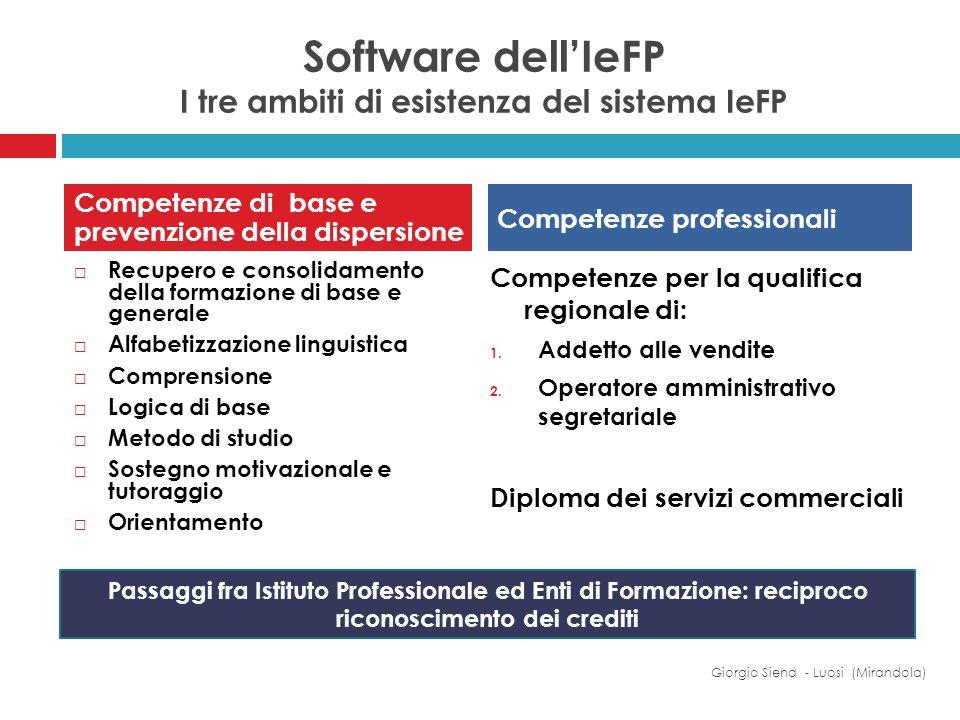 Software dellIeFP I tre ambiti di esistenza del sistema IeFP Recupero e consolidamento della formazione di base e generale Alfabetizzazione linguistic