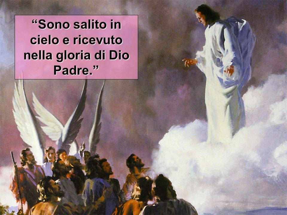 Sono salito in cielo e ricevuto nella gloria di Dio Padre.
