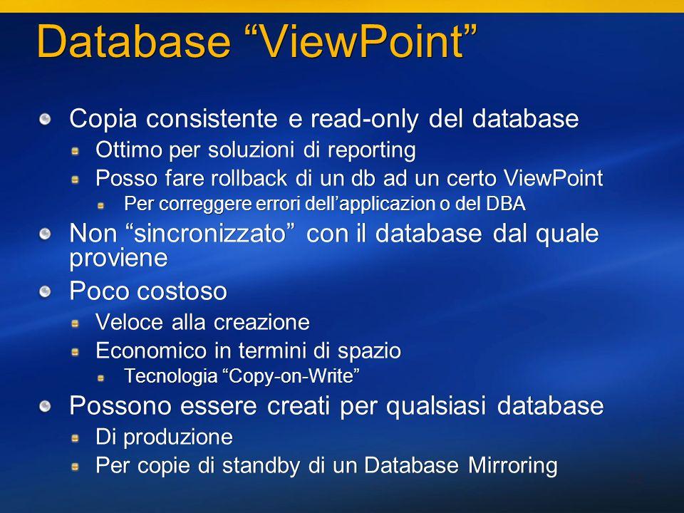 32 Database ViewPoint Copia consistente e read-only del database Ottimo per soluzioni di reporting Posso fare rollback di un db ad un certo ViewPoint