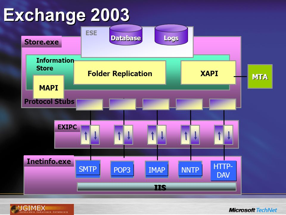 Exchange 2003 Store.exe MAPI Folder ReplicationXAPI MTA ESE Logs Database EXIPC Inetinfo.exe SMTP POP3 IMAP NNTP HTTP- DAV HTTP- DAV IIS Protocol Stubs Information Store