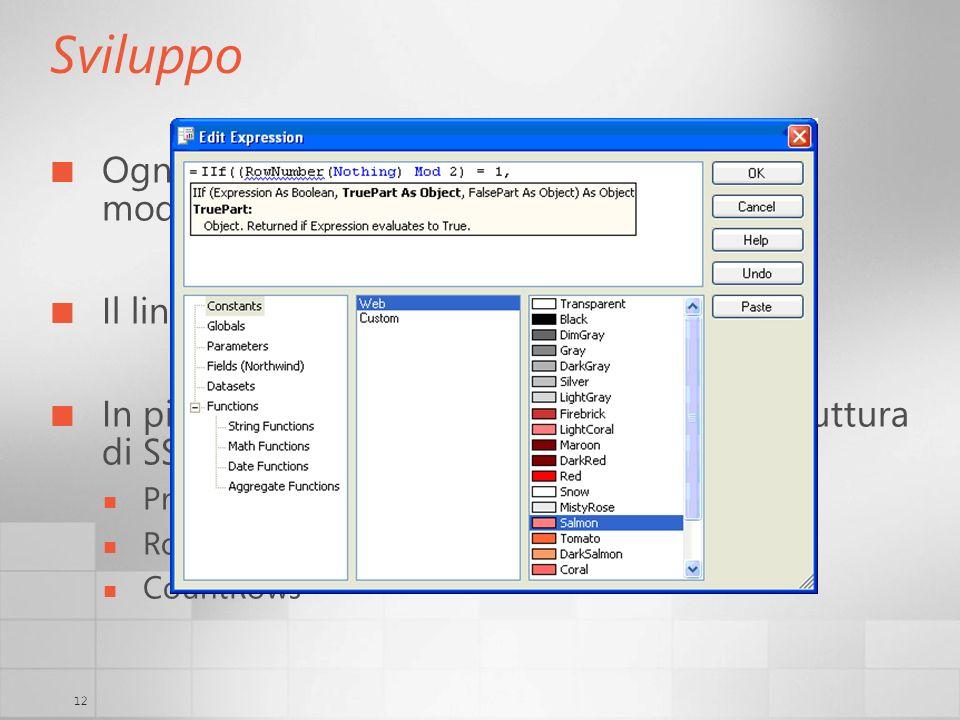 12 Sviluppo Ogni proprietà visibile (e non) può essere modificata tramite luso di expressions Il linguaggio è VB.NET In più ci sono funzioni aggiunte