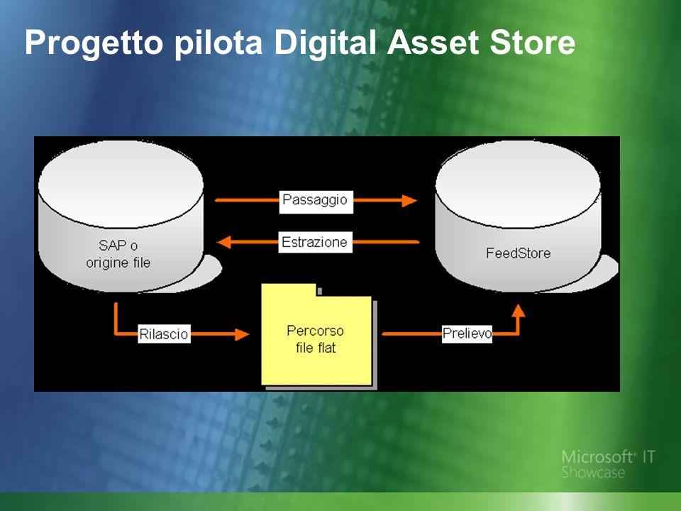 Progetto pilota Digital Asset Store