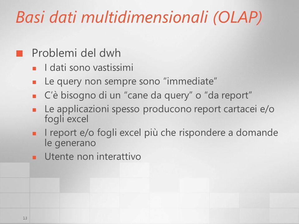 13 Basi dati multidimensionali (OLAP) Problemi del dwh I dati sono vastissimi Le query non sempre sono immediate Cè bisogno di un cane da query o da r