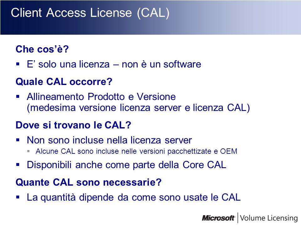 Client Access License (CAL) Che cosè? E solo una licenza – non è un software Quale CAL occorre? Allineamento Prodotto e Versione (medesima versione li