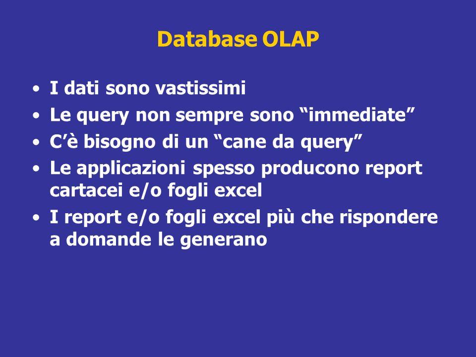 Database OLAP I dati sono vastissimi Le query non sempre sono immediate Cè bisogno di un cane da query Le applicazioni spesso producono report cartace