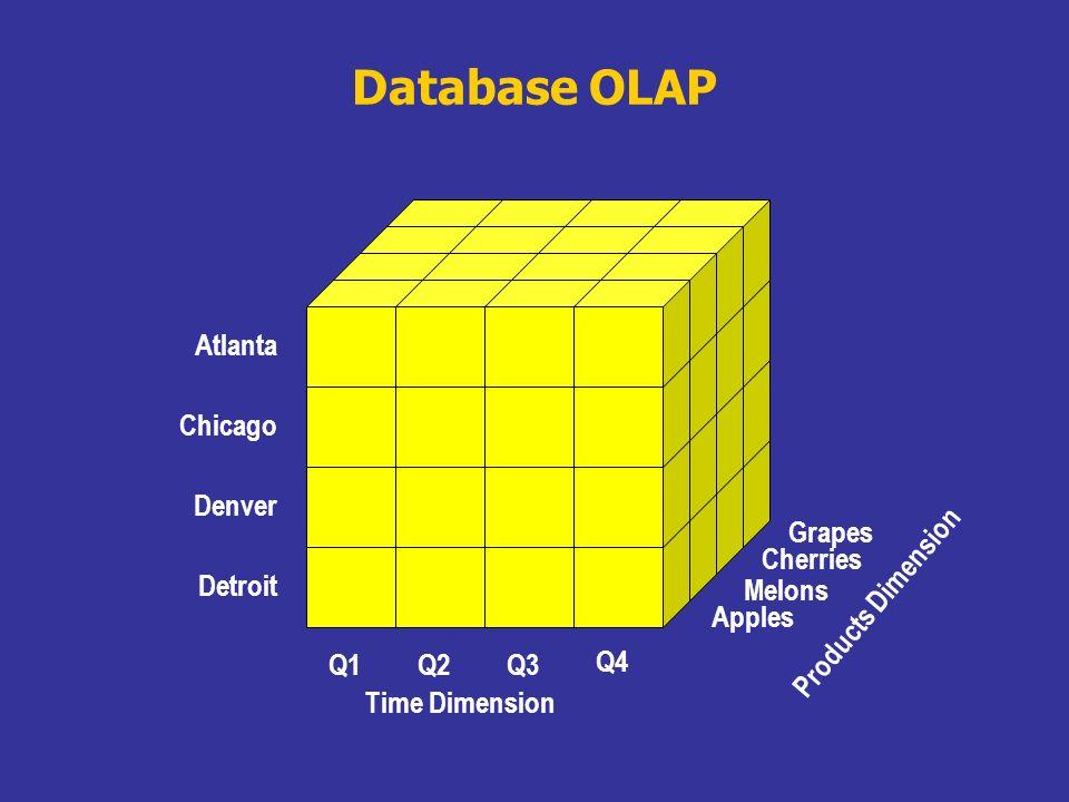 Database OLAP Detroit Denver Chicago Atlanta Q4 Q1Q2Q3 Time Dimension Cherries Grapes Apples Melons Products Dimension