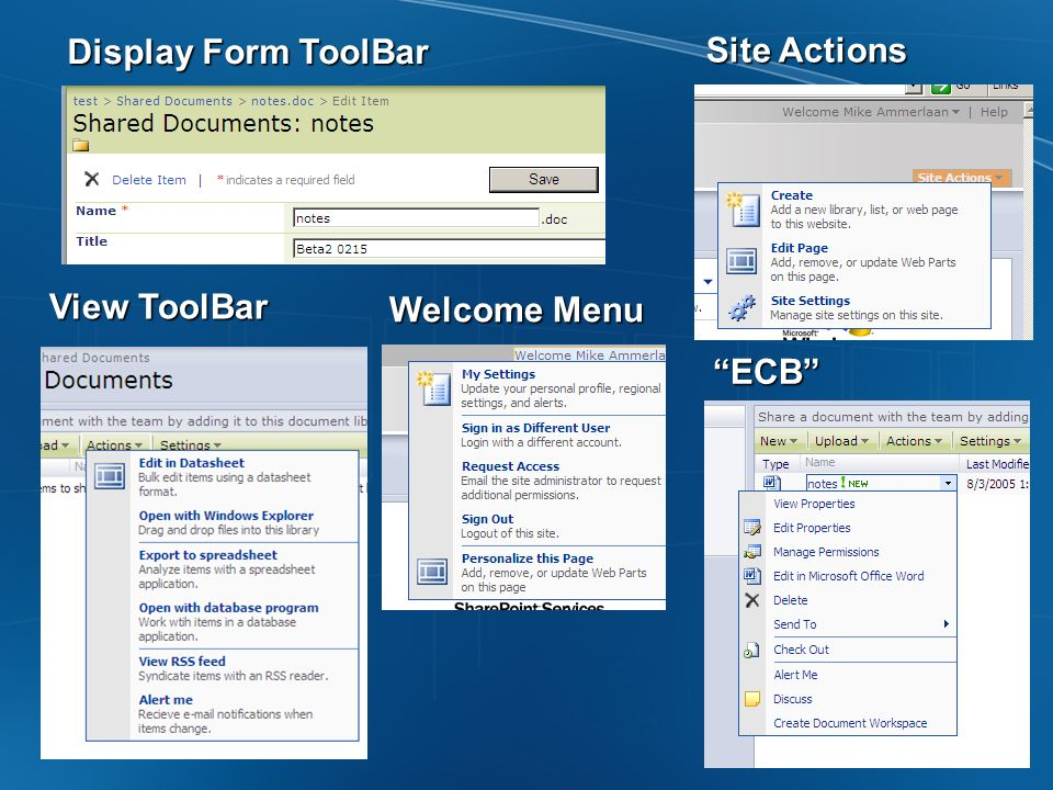 Display Form ToolBar View ToolBar Welcome Menu Site Actions ECB