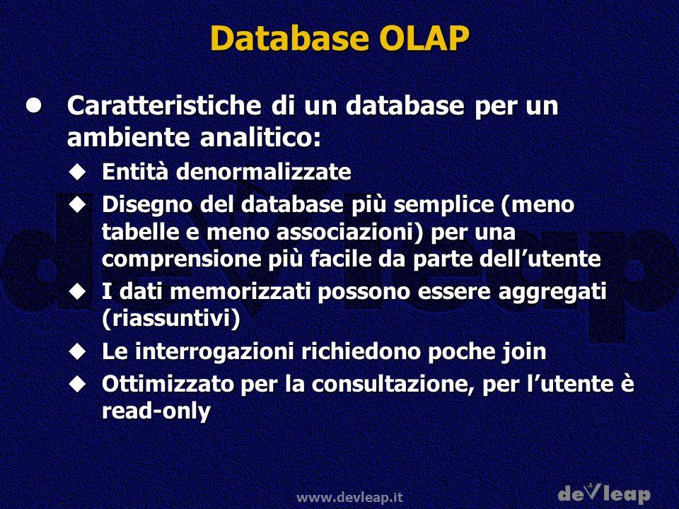 www.devleap.it Database OLAP Caratteristiche di un database per un ambiente analitico: Caratteristiche di un database per un ambiente analitico: Entit